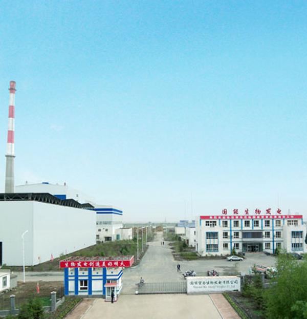 国能望奎生物发电有限公司