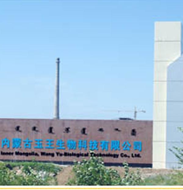 内蒙古玉王生物科技有限公司
