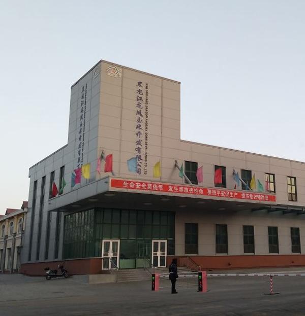 黑龙江龙凤玉米开发有限公司